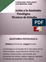 patologia.ppt