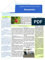 Newsletter Novembro 2013