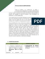 Modelo Estructural Articulacion de Subprogramas Diana Cordoba Vanessa Gomez Daniela Cortez