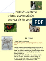 comprension lectora 1º ciclo