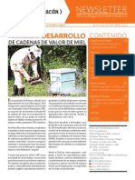 ICCO Centroamerica Newsletter Nov 2013