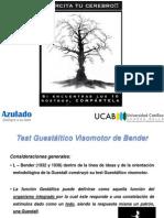 Plantilla de Test Neuropsicologicos II b