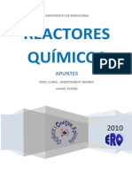 Reactores Quimicos Universidad de Barcelona