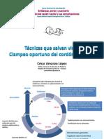 CLAMPEO_OPORTUNO (PPTminimizer)