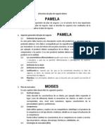 Estructura de Plan de Negocio - Upn Grupo