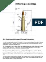 The 223 Remington Cartridge