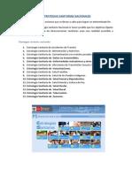 Informe de Estrategias Sanitarias Nacionales - Copia