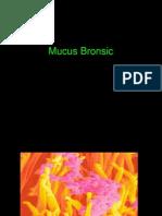 Mucus Bronsic