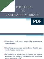 Histoembriologia de Cartilagos y Huesos[1]