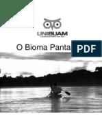 O Bioma Pantaneiro2