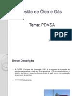 Gestão de Óleo e Gás _ PDVSA