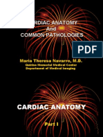 Cardiac Anatomy and Common Pathologies