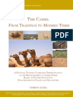The Camel From Tradition to Modern Times