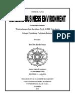 8- Culture Environment