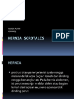 56051775-Hernia-Scrotalis.pptx