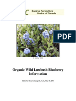 Organic Blueberry Guide