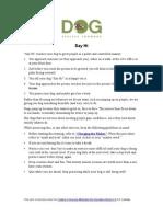 Dog Training - Targeting and Say Hi