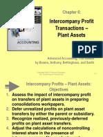 Beams11_ppt06-Intercompany Plant Asset