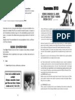 vc3ada-crucis-2013.pdf