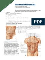 Abdomen. Pardes abdominales I y II.pdf