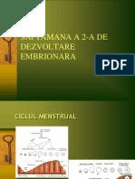 SAPT 2 SI 3 Embrio