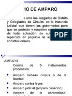 JUICIO DE AMPARO antecedentes 2