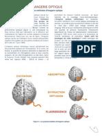 PDF Imagerie Optique1