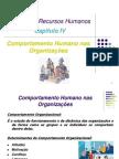 Capítulo IV - Comportamento Organizacional.pdf