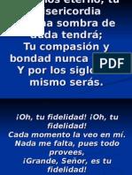 Oh Tu Fidelidad