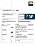 Insect Identification Sheet