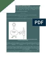Producción Biológica de Hidrógeno III
