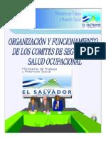 Presentacion Sobre La Organizacion y Funcionamiento de Los Comites de Seguridad y Salud Ocupacional
