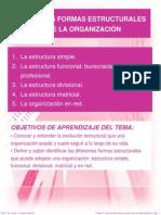 TEMA 4 LAS FORMAS ESTRUCTURALES DE LA ORGANIZACIÓN