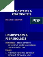 Hemostasis & Fibrinolisis