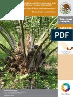 Palma Aceite Establecimiento (1)