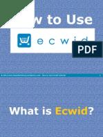 Lyn Nafarrete How to Use Ecwid