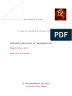 Resumen Del Catalogo Skf