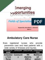(NLM) Nursing Specialization Ppt True (Am)
