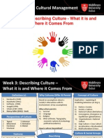 MGT 3190 - Lecture 3- Describing Culture What It is and Where It Comes From