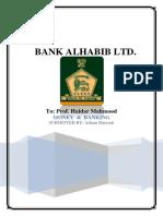 Bankalhabib Report