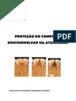 PROTEÇÃO DO COMPLEXO DENTINO PULPAR - Resumo