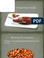 How is Ketchup Made