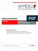 Ethiopia - Culture - Final Evaluation Report
