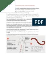 Cirugía de Bypass coronario o Cirugía de revascularización miocárdica
