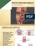 Anatomia Nasului