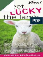 Don't Eat Lambs