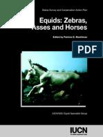 Equids Zebras, Asses and Horses - IUCN