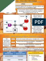 Tema 5 Glucidos y Lipidos (II)