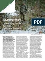 Backstory Essay
