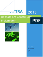 Svenska Akademisk Uppsats Om Gener RNA Och Prokaryoter